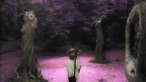 The Forest of Dun in Series 4 (1990).