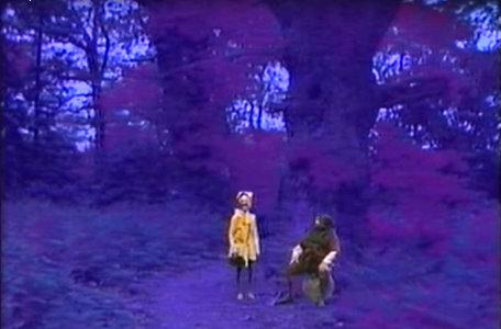 A forest glen in the third series of El Rescate del Talisman.
