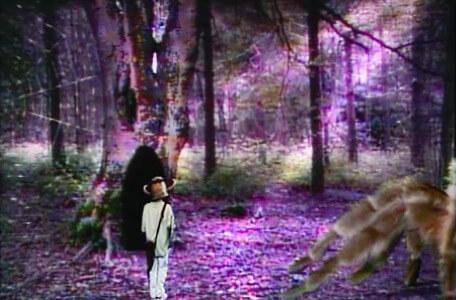 Knightmare Series 4 Quest 2. Alistair in a clearing as Ariadne approaches.